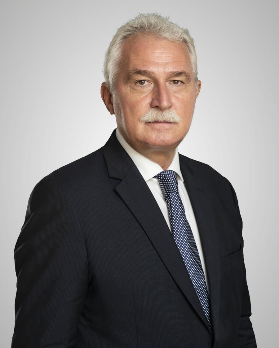 Vasile Diaconescu